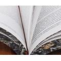 """Книга """"Путешествия Гулливера и другие произведения"""" в одном томе в кожаном переплете с рисованным обрезом 1"""