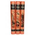 Дж. Р. Р. Толкин. «Властелин колец» в 3 томах1