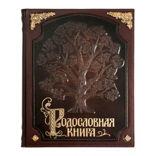 Родословная книга «Стандартная»  с бронзовыми накладками